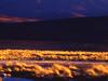 Antofalla  Sunset