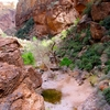 A Pool Of Wate In Tonto National Forest