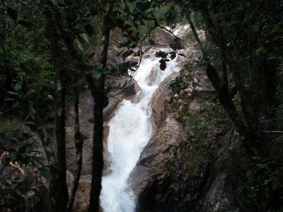Araluen Falls In Eungella National Park