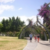 Arbour At South Bank Parklands