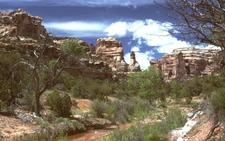 Arch Canyon, Utah