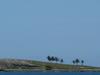 Archipel De  Abrolhos