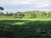 Arkley Lane Pasture