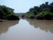 Arli National Park With River Arli