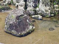 Ichijōdani familia Asakura históricos Ruinas