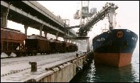 Bulk Cargo In Transit