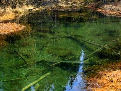 A Spring In Valkmusa National Park