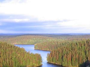 Repovesi Parque Nacional