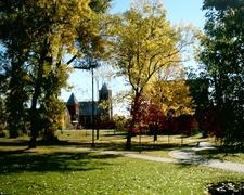 Autumn Foliage In The Park.