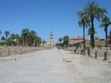 Hundreds Of Sphinxes Once Lined The Road To Nearby Karnak
