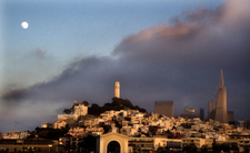 A View Of Telegraph Hill