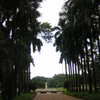 Calcutta Botanical Garden