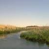 Azraq View