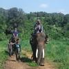 Baan Chang Elephant Park Sfari