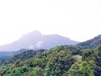 Bach Ma Montanha