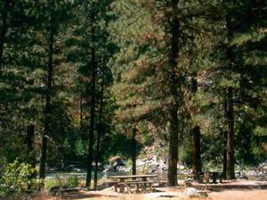 Badger Creek Campground