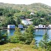 Baine Harbour