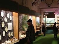 Museo de Historia Natural Bakony