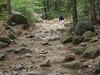 Ballantine Trail 283 - Tonto National Forest - Arizona - USA