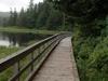 Balls Lake Trail