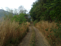 Bandingilo Parque Nacional