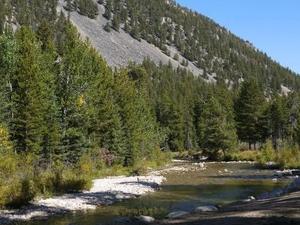 Basin Campground