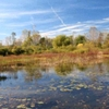 Bass River Recreation Area