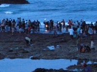 Bau Nyale Festival 2012