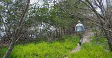 Bayshore Loop Trail