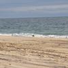 Beach In Charlestown