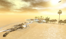 Beach Natural View