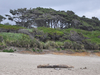 Beachside State Recreation Site
