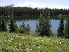 Bearpaw Lake Trailview - Grand Tetons - Wyoming - USA