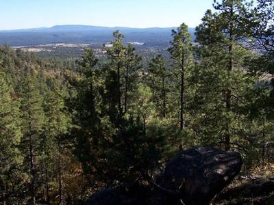 Beautiful Views Along The Rock Ridge Trail