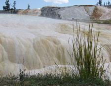 Beaver Ponds Trail - Yellowstone - Wyoming - USA