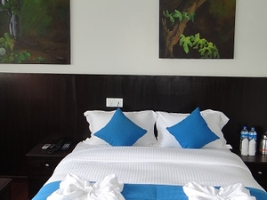 Hotel Swapna Bagh Offers 55% Discount Photos