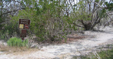 Beginning Of The Coastal Prairie Trail
