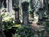 Bel Air Cemetery