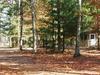 Belleplain State Forest