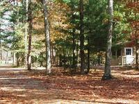 Belleplain Forestal del Estado