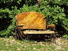 Bench In Wildwood Metropark - Toledo OH