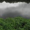 Benito River