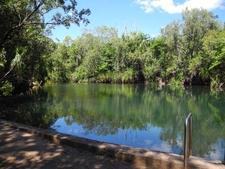 Berry Springs Pool