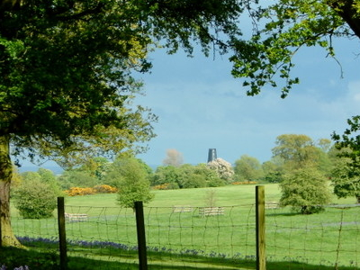 Beverley  Westwood Showing  The  Black  Mill