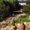 Bhaludham