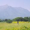 Bhandardara-Countryside