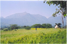 Bhandardara-Countryside