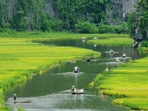 Tam Coc and Bich Dong - Day Tour