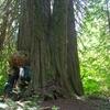 Big Beaver Trail