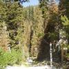 Big Creek Summit Trail